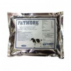 FATMORE 500GMS